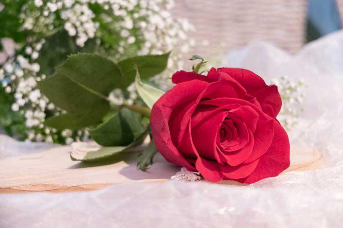 Solennizza le ricorrenze con il fiore giusto