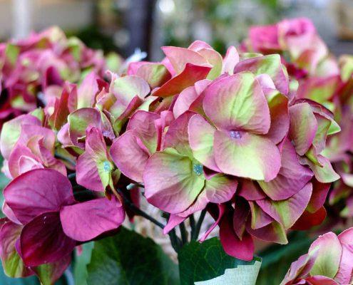 fiori da esterno sintetici