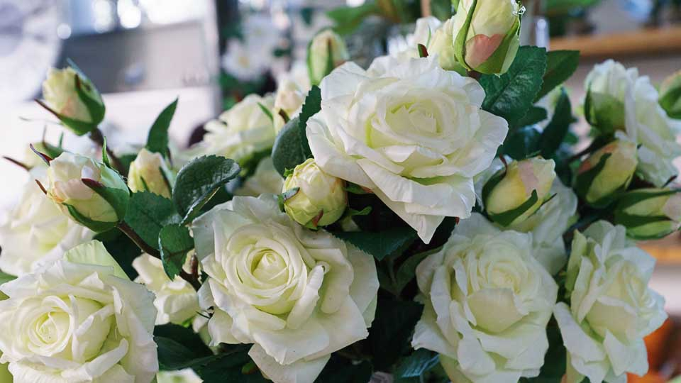 rose bianche artificiali