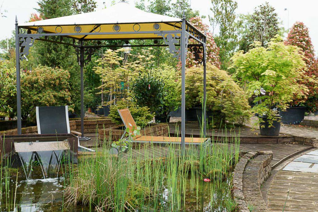 Piante da giardino e esterno garden roagna vivai cuneo - Piante tropicali da esterno ...