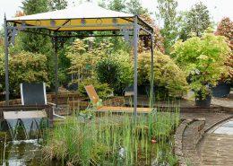 piante acquatiche da esterno