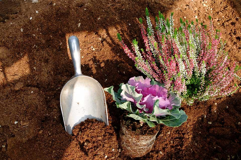 grande scelta di terricci specifici per ofni pianta e o giardino