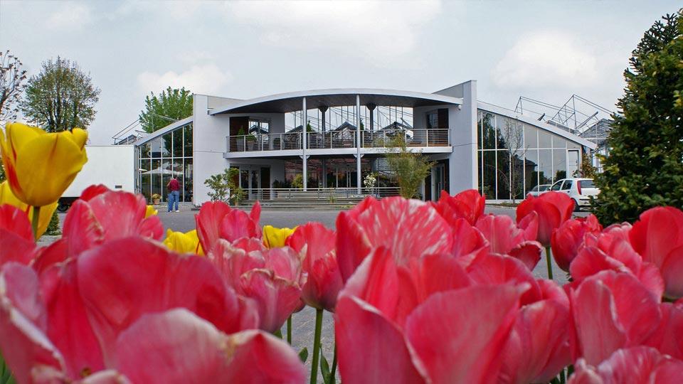 Ingresso Garden con aiuola di tulipani