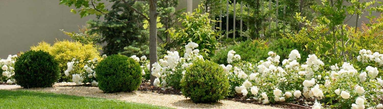 Giardino realizzato dal Garden Roagna Vivai