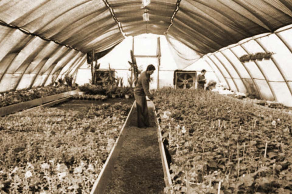 La storia del nostro Garden