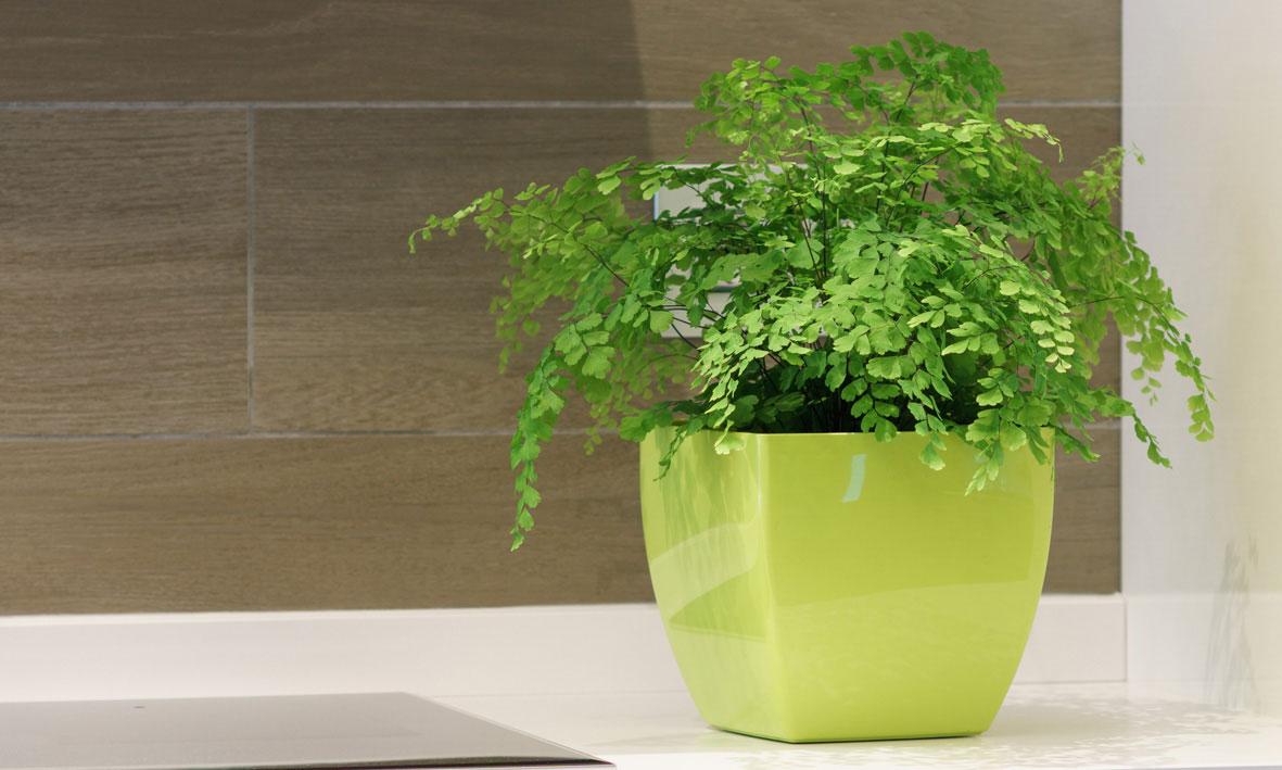 Vasi Per Piante Da Terrazzo vasi da esterno interno e giardino | garden roagna vivai - cuneo