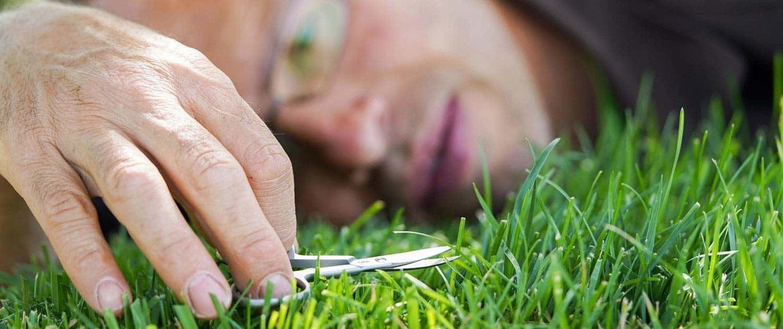 Se siete alla ricerca di un giardiniere in cuneo il nostro garden offre il servizio di realizzazione e manutenzione giardini