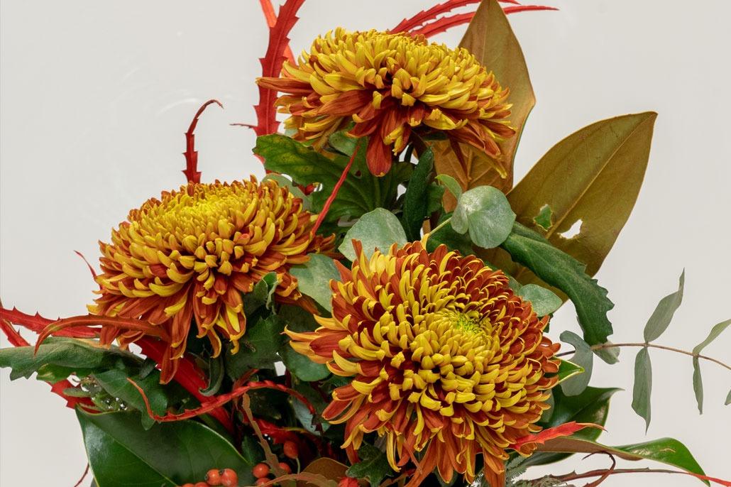 Composizione floreale di crisantemi per la ricorrenza della festività dei santi o dei defunti